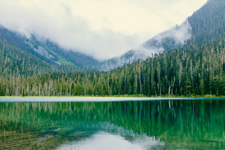 intercambio en vancouver - paisajes naturales