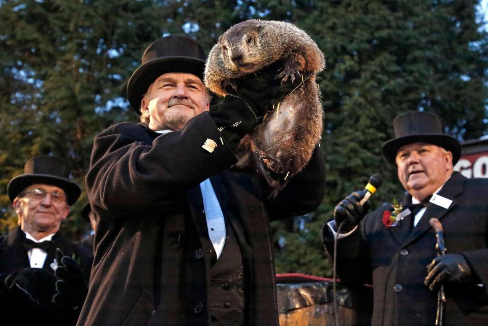 tradiciones de Canadá - día de la marmota